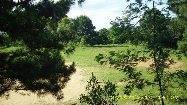 Rancho com 1 dormitório à venda por R$ 4.399.000,00 - Lomba do Pinheiro - Porto Alegre/RS - Foto 6