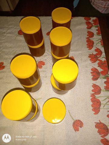 Vendo mel de abelha puro - Foto 3