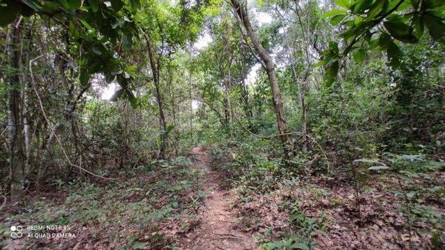 Área nas Margens do Rio Quente 12.643,39 - Foto 3