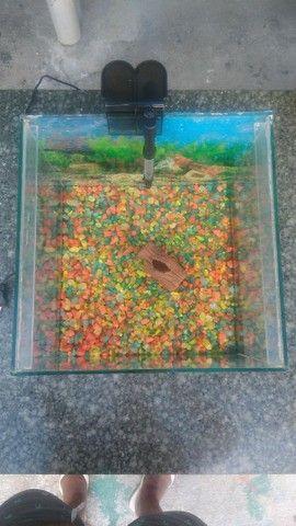 vendo aquario - Foto 2