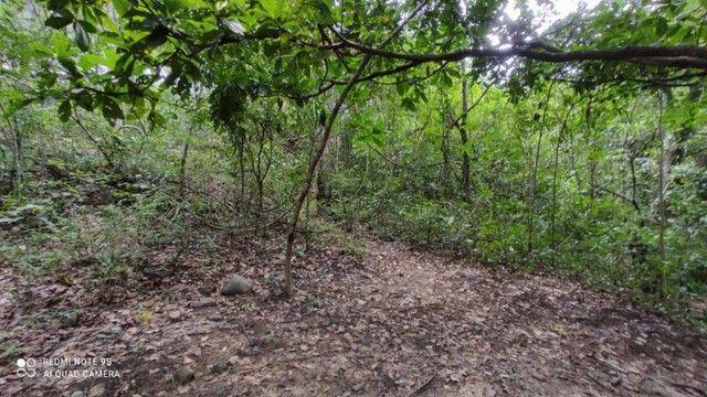Área nas Margens do Rio Quente 12.643,39 - Foto 18