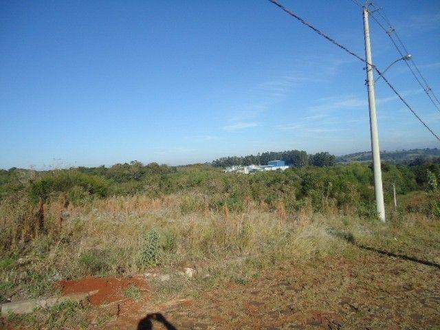 (TE2487) Terreno no Bairro Haller, Santo Ângelo, RS - Foto 2