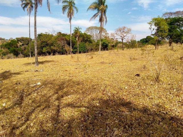 Chácara Aragoiânia, 14,65 alqueires, (71,71 hectares), - Foto 17