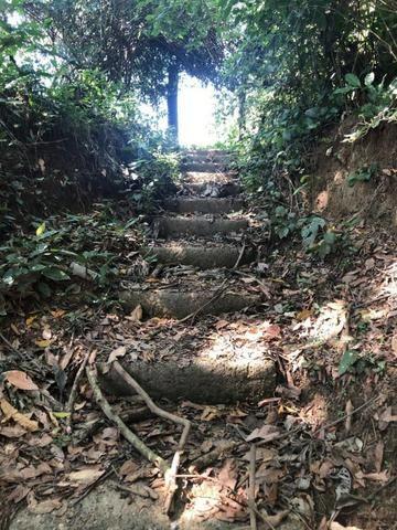 Chacara em Sto Antonio Leverger 110metros de Beira de Rio C/Tanque de Peixes Arvores Fruti - Foto 16