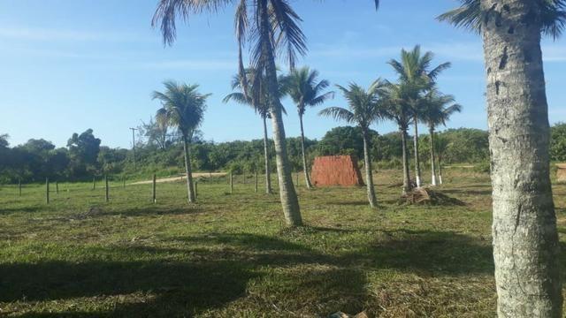 L - Terrenos localizados à 1km da Rodovia Amaral Peixoto!! - Foto 3