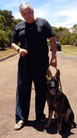 Adestramento e venda de cães de guarda prontos - Foto 4
