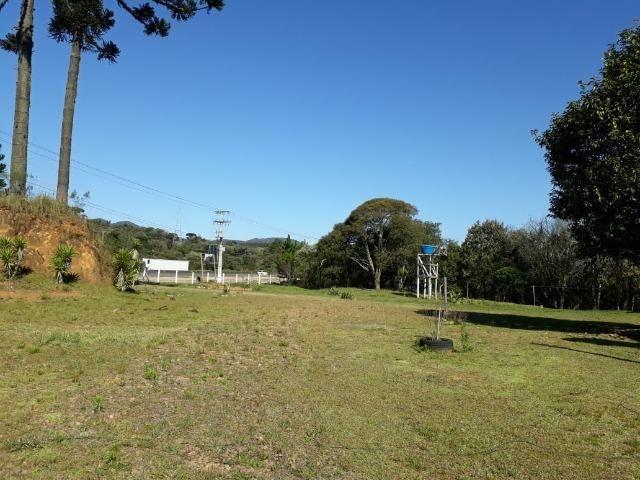 Chácara em Contenda -São José dos `Pinhais - Foto 3
