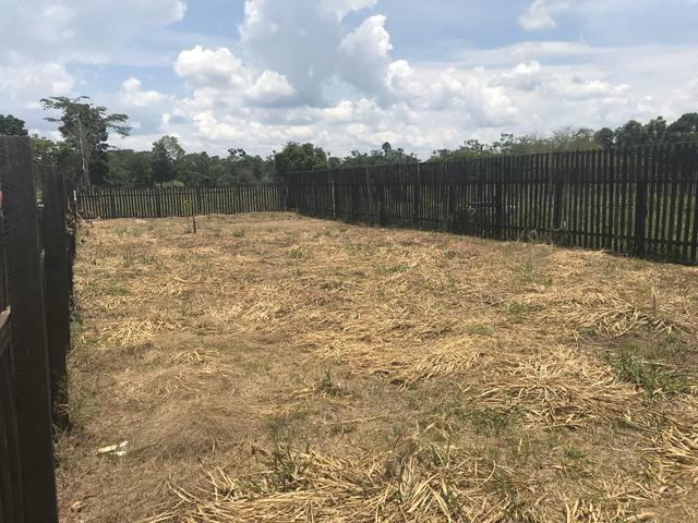 Vendo Terreno ramal da Garapeira - Foto 4