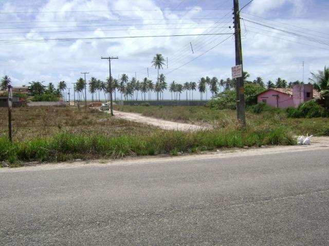 Terreno em Aver-o-mar (Barra de Sirinhaém) - Foto 4