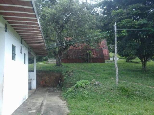 Fazenda para Venda em Carvalhos, Rural - Foto 5