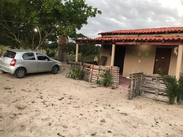 Sítio de 60Hectares a 13Km da Cidade do Buriti dos Lopes. (140mil) - Foto 6