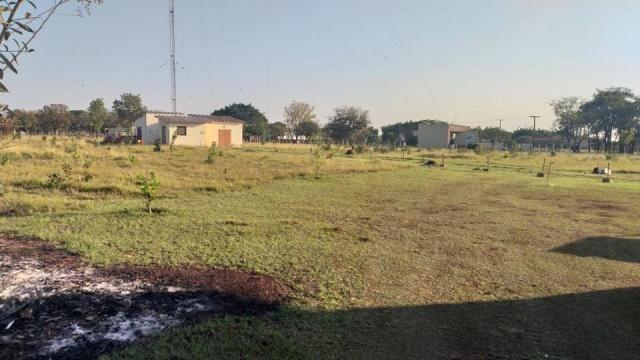 Área Proxima a UFMS - Foto 15