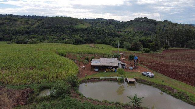 Chácara com acesso ao rio Uruguai 60000 m² barra do lajeado - Foto 2