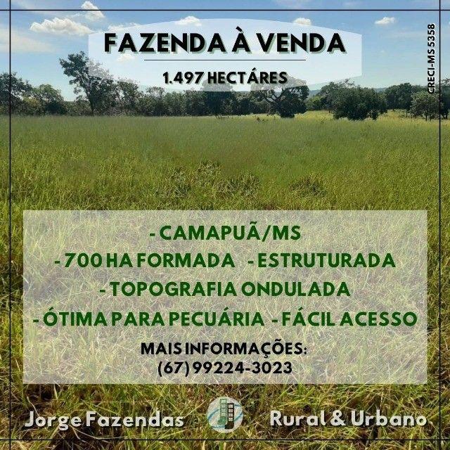 Fazenda 1.497 Hectáres Camapuã Ms Fácil Acesso Ótima para pecuária