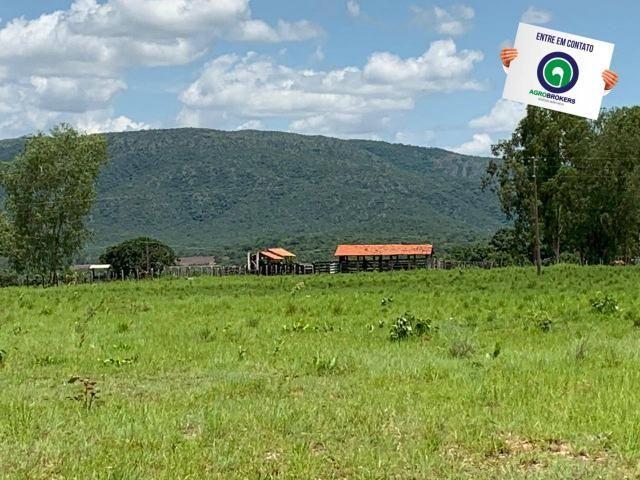 Fazenda 362,27ha acorizal - Foto 2