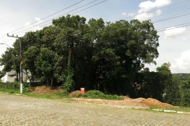 Terreno para Venda, 918,00 m², Rio Negrinho / SC, bairro Bela Vista - Foto 5