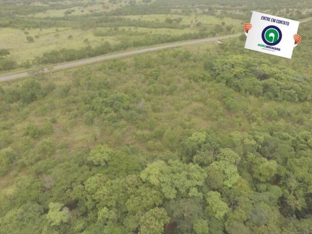 Fazenda 200 ha na beira do asfalto - Foto 10