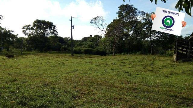 Fazenda na região livramento - Foto 10
