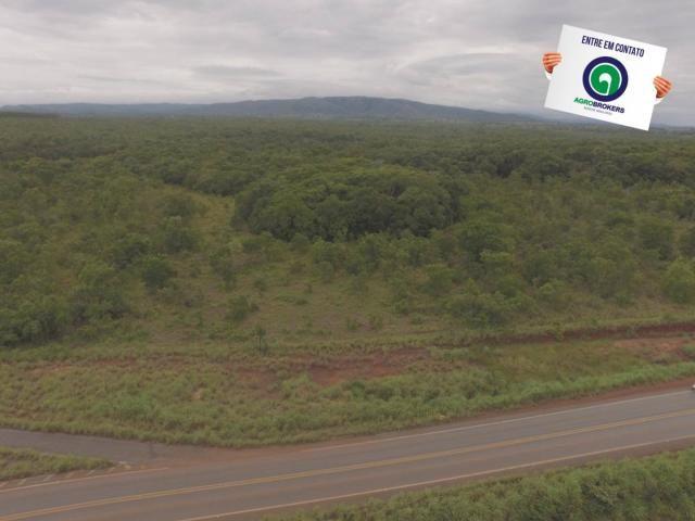 Fazenda 200 ha na beira do asfalto - Foto 8