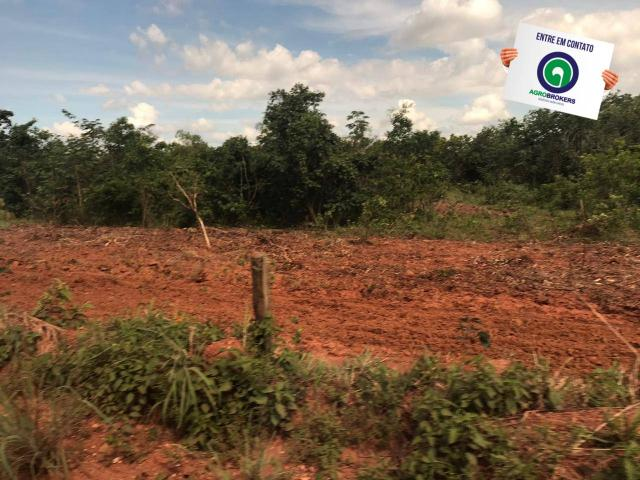 Fazenda 1400 ha na região de cáceres - Foto 6