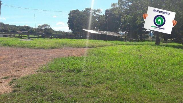 Fazenda 1.650 ha sentido caceres - Foto 4