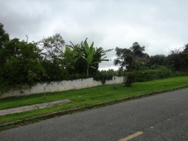 Terreno para alugar em Vista alegre, Curitiba cod:02291.003 - Foto 3