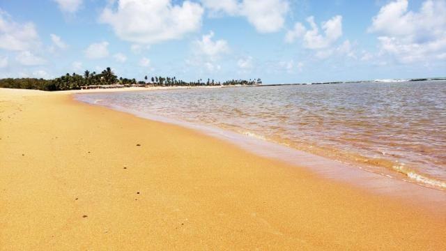 Vendo Terreno 432 m² Corais do Sonho Verde Condomínio Fechado Beira-mar em Paripueira - Foto 15