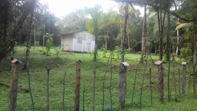 Chacrinha em Guaraqueçaba - Foto 4