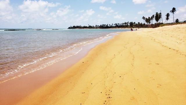Vendo Terreno 432 m² Corais do Sonho Verde Condomínio Fechado Beira-mar em Paripueira - Foto 4