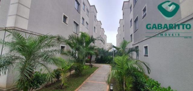 Apartamento para alugar com 2 dormitórios em Pinheirinho, Curitiba cod:00419.001 - Foto 2
