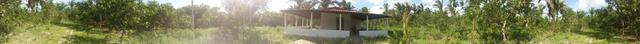 Vendo Propriedade Municipio de Vargem Grande - Foto 10