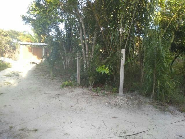 Terreno no Distrito de Curralinho, próximo a Sauípe