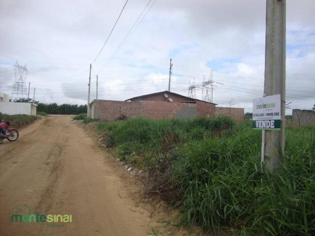 Terreno à venda, 220 m² por R$ 45.000 - Manoel Camelo - Garanhuns/PE - Foto 3