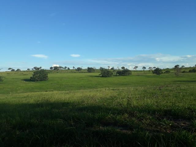 Fazenda Guiratinga MT 6.080 Ha - Foto 11