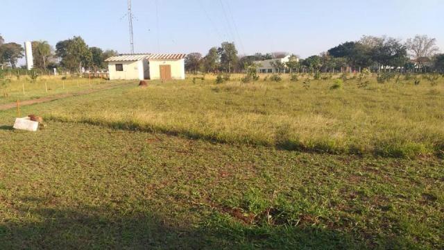 Área Proxima a UFMS - Foto 18