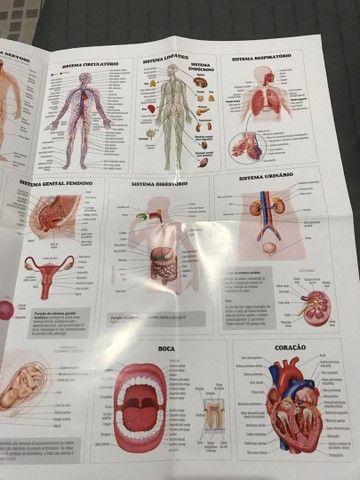 Livros voltado para área de radiologia  - Foto 5