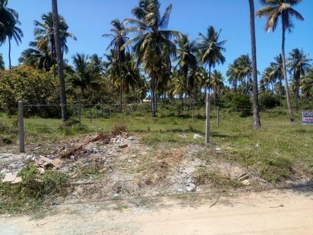 Terreno no Mosqueiro - Foto 4
