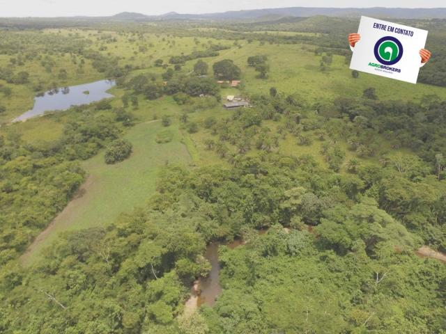 Fazenda 162 ha região de acorizal - mt - Foto 10