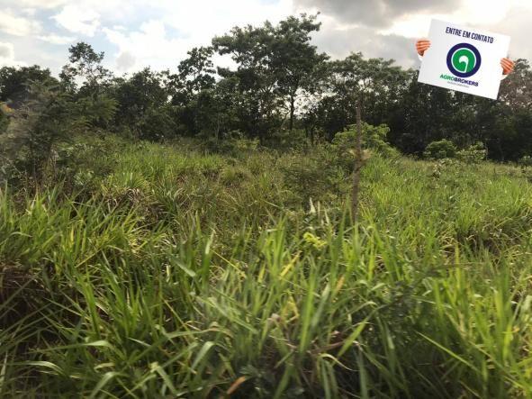 Fazenda 1400 ha na região de cáceres - Foto 4