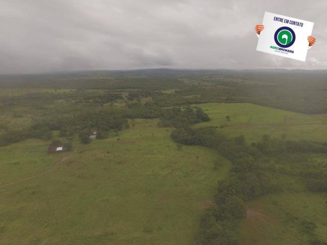 Fazenda 700 ha região do manso - Foto 11