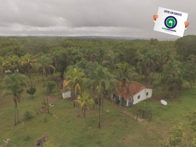 Fazenda 700 ha região do manso - Foto 3