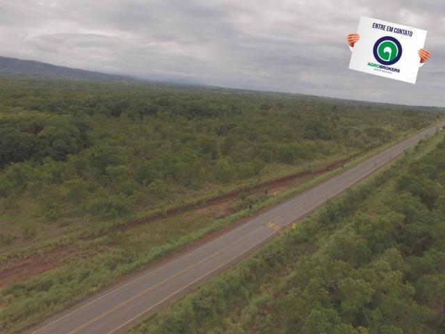 Fazenda 200 ha na beira do asfalto - Foto 7
