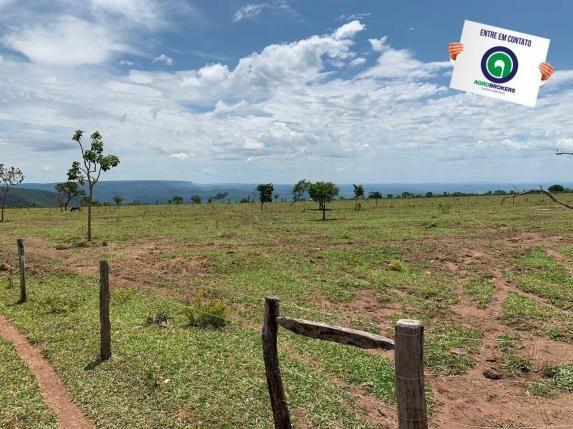 Fazenda 100 ha região de bom jardim - Foto 10