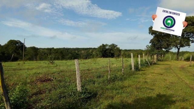 Fazenda na região livramento - Foto 3