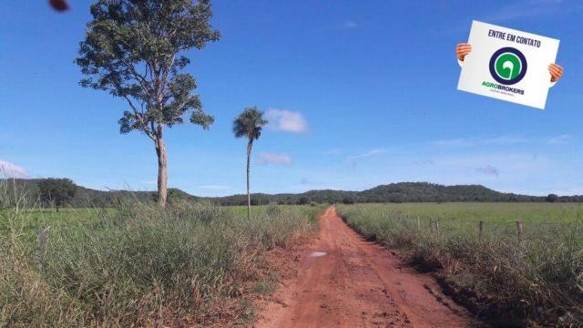 Fazenda 1.650 ha sentido caceres - Foto 14