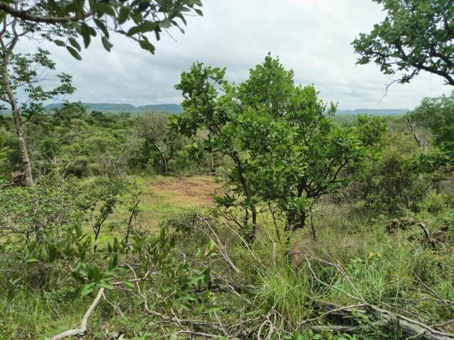Linda propriedade de 30 hectares para fazenda