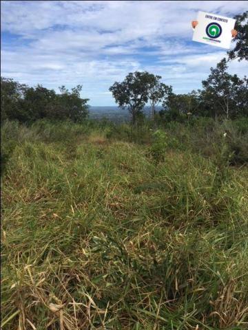 Fazenda 1600 ha no manso - Foto 9