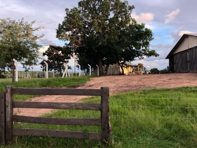 Nova Taquari MT Fazenda a 60 km da cidade com 2.480 hectares em pasto - Foto 8