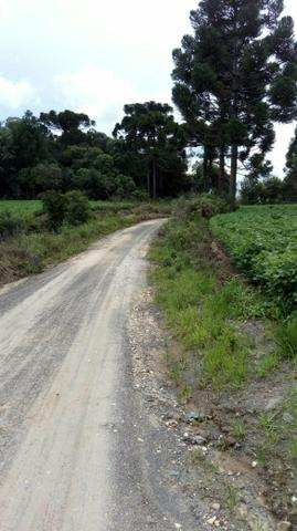 Sítio Chacara Pedra Alta - Foto 14