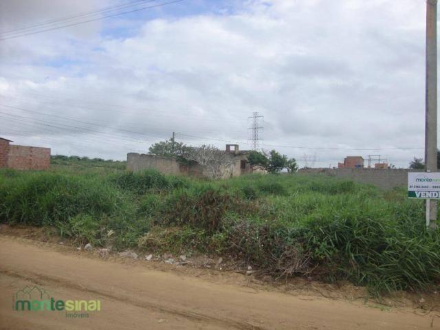 Terreno à venda, 220 m² por R$ 45.000 - Manoel Camelo - Garanhuns/PE - Foto 2